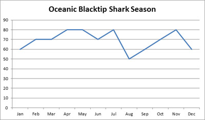 blacktip-graph